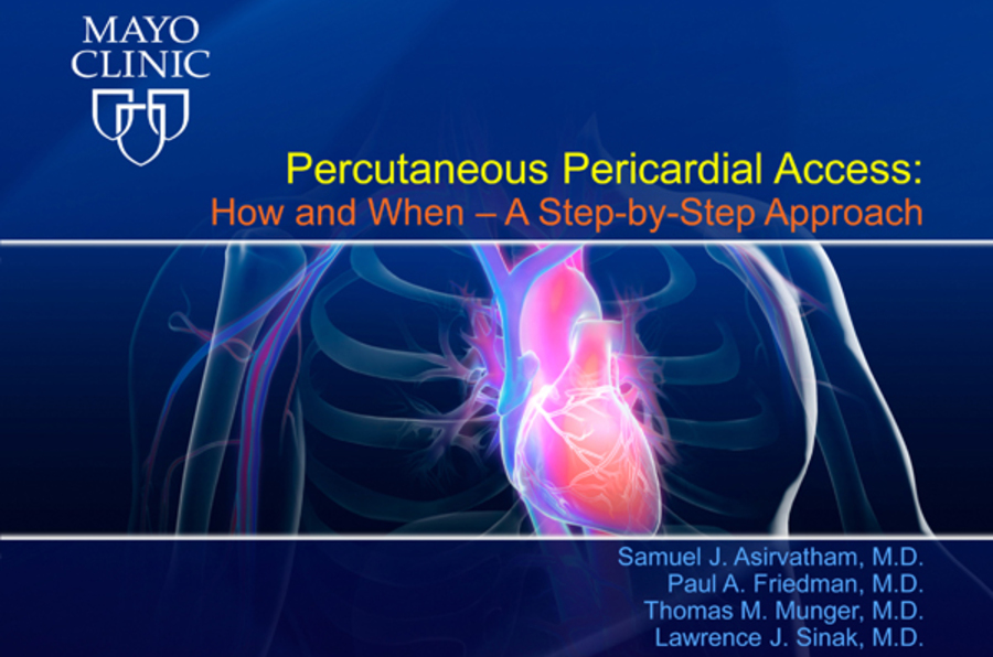 Percutaneous Pericardial Access: How and When - A Step-by-Step Approach