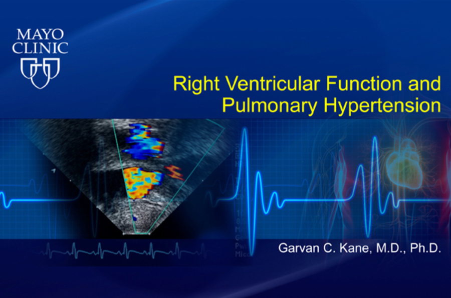 Right Ventricular Function and Pulmonary Hypertension