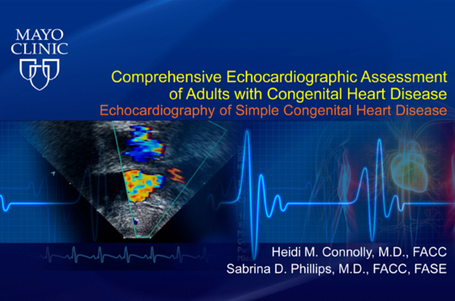 Comprehensive Echocardiographic Assessment of Adults with Congenital Heart Disease - Echocardiography of Simple Congenital Heart Disease