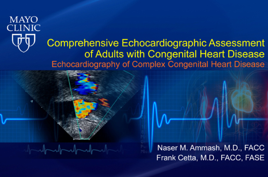 Comprehensive Echocardiographic Assessment of Adults with Congenital Heart Disease - Echocardiography of Complex Congenital Heart Disease