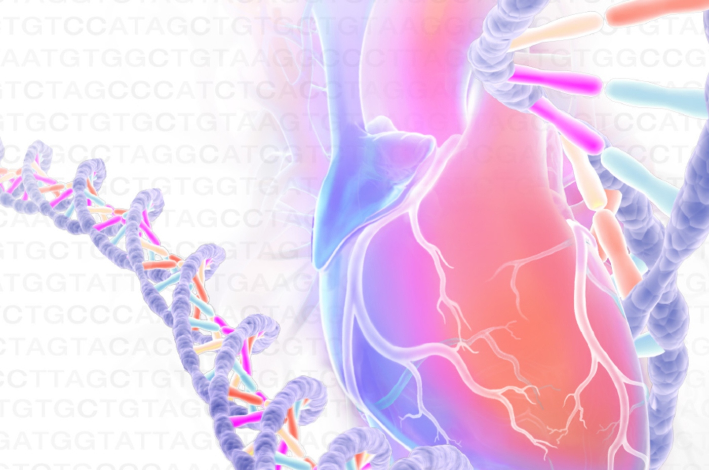The Genetics of Heart & Vascular Disease