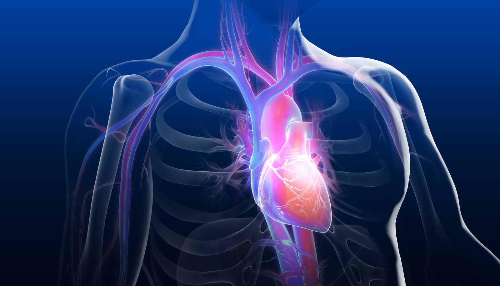 Innovations in Structural Heart Interventions