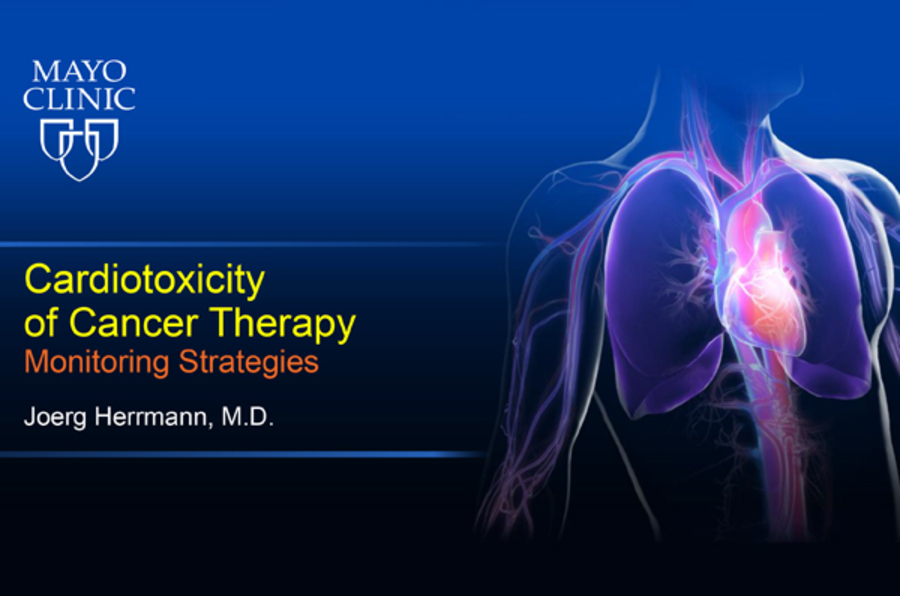 Cardiotoxicity of Cancer Therapy: Monitoring Strategies