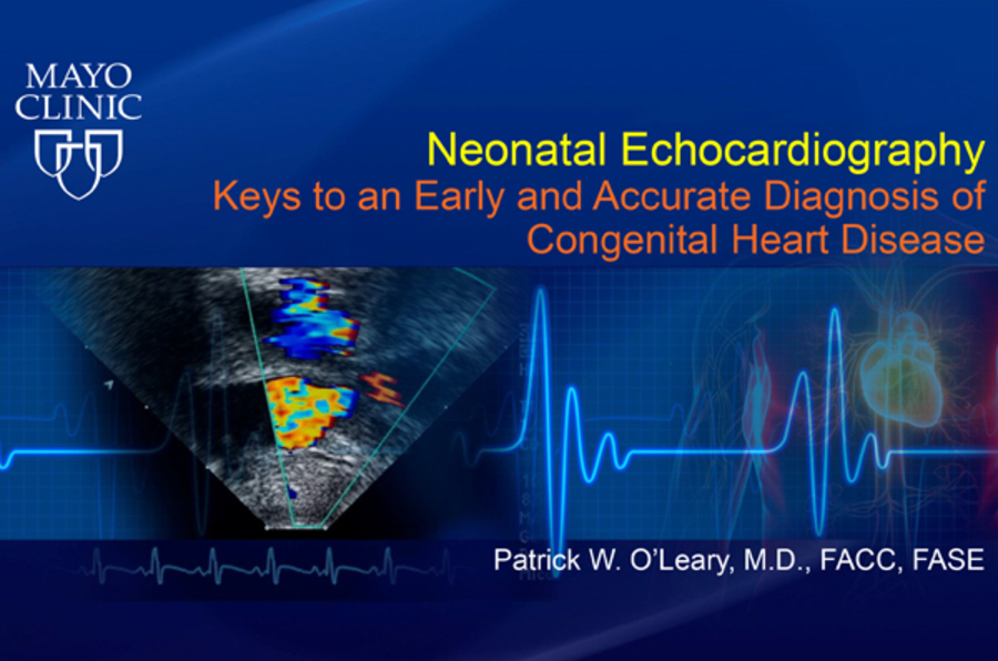 Neonatal Echocardiography: Keys to an Early and Accurate Diagnosis of Congenital Heart Disease